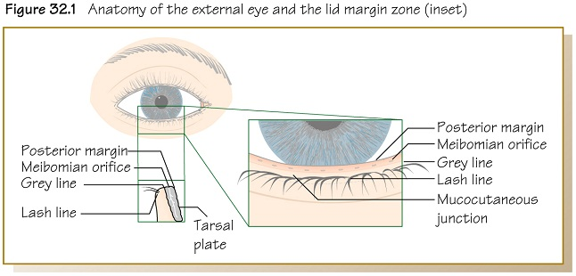 Olver Ophthalmology At A Glance border=